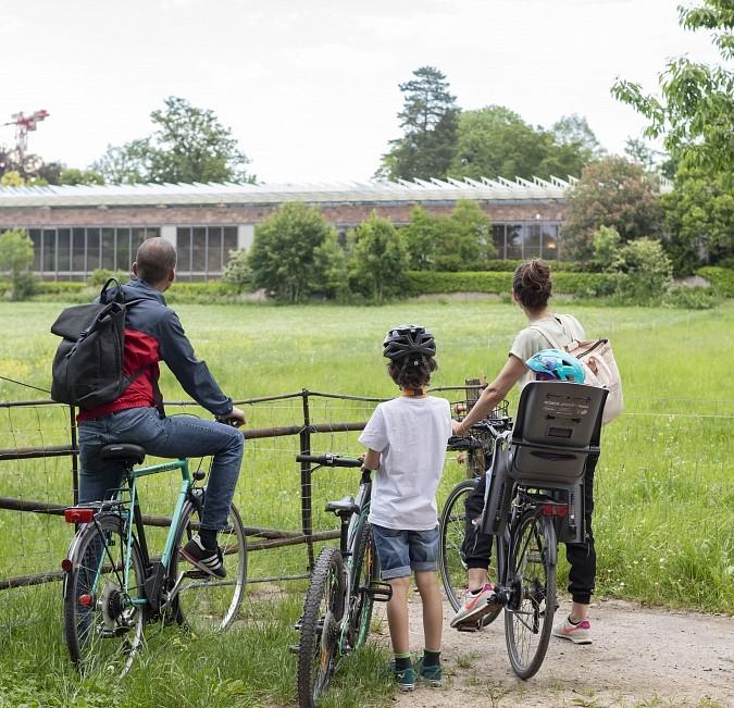 Fahrradweg Fondation Beyeler Vitra Design Museum