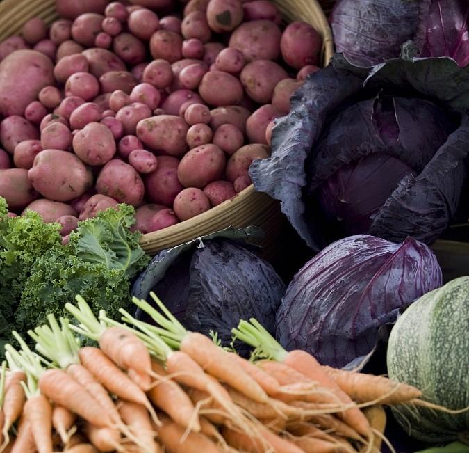 Wochenmarkt Dorfmarkt Riehen Märkte