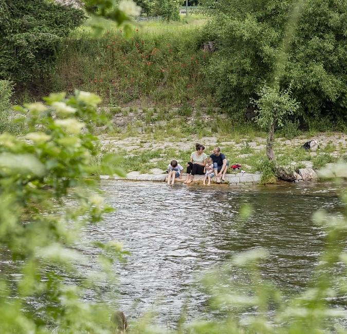 Wiese Fluss Baden