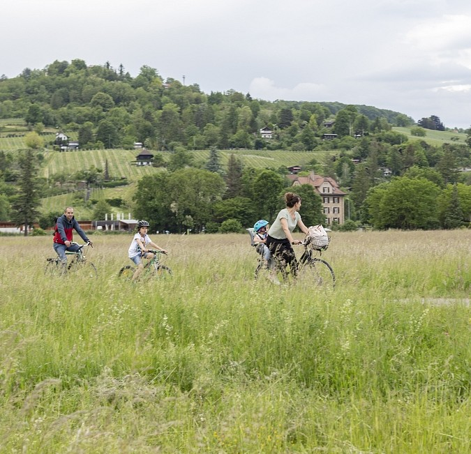 On Two Wheels - Tour by Bike